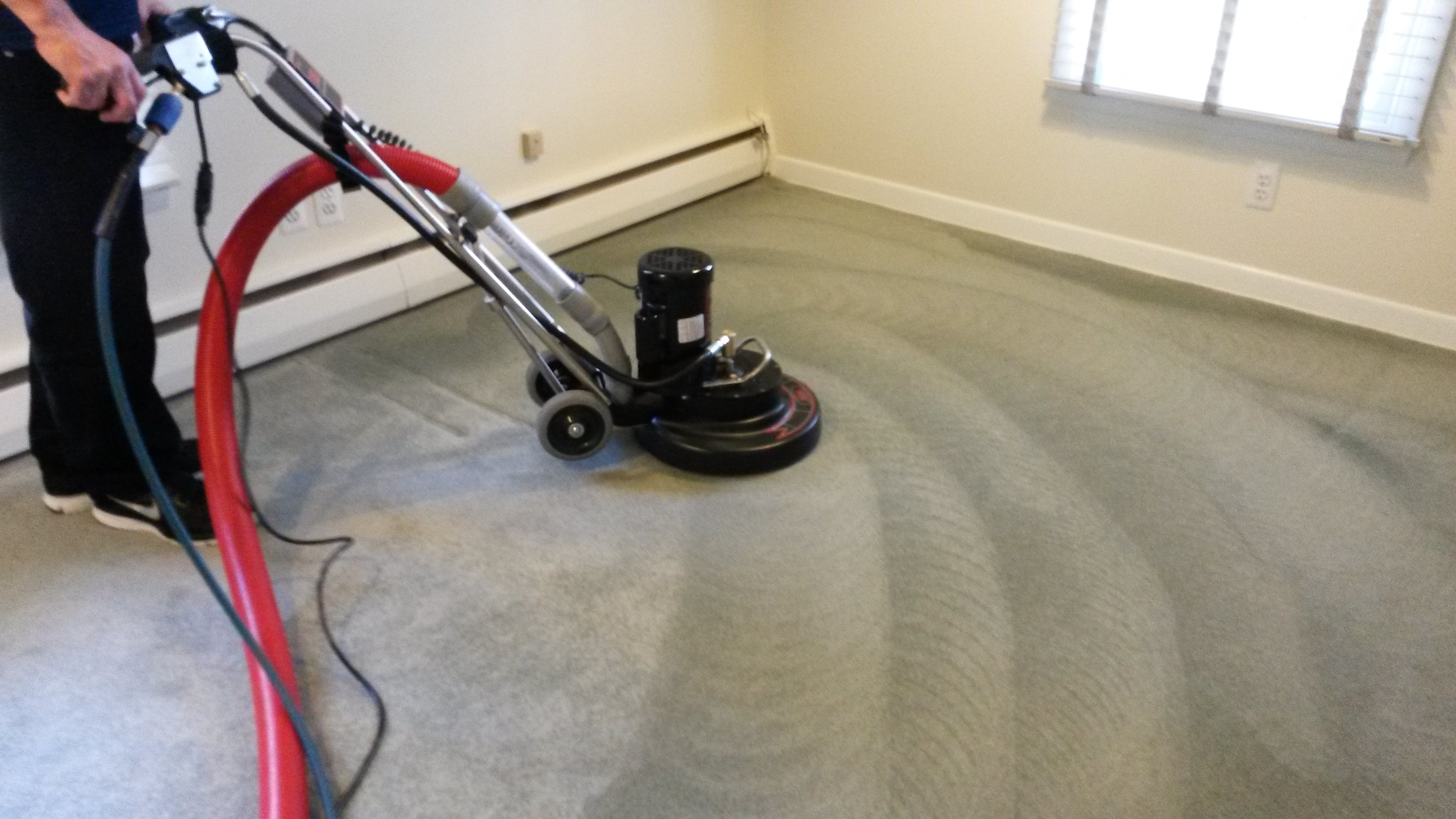 The Practice of Carpet Cleaning Seems to be Easy