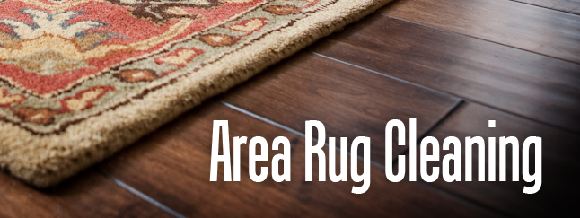 how to clean an area rug outside