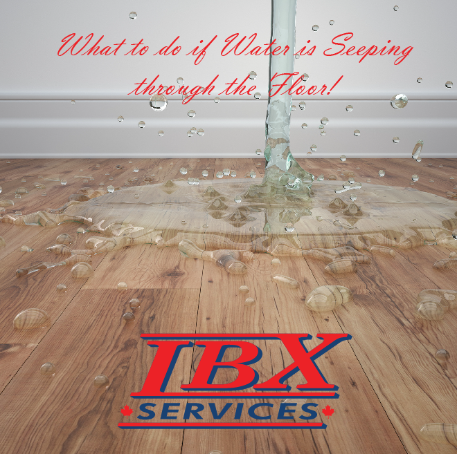 What to do if water is seeping through the floor?