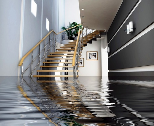 How fast should you deal with water damage?