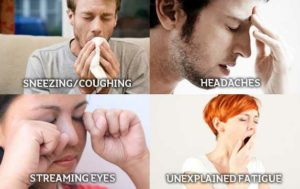 mould causes