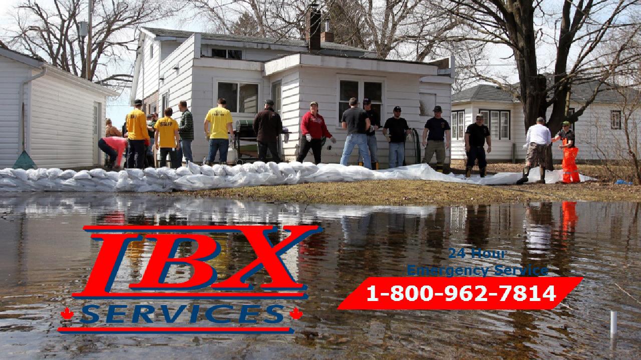 6 Steps To Take After A Flood