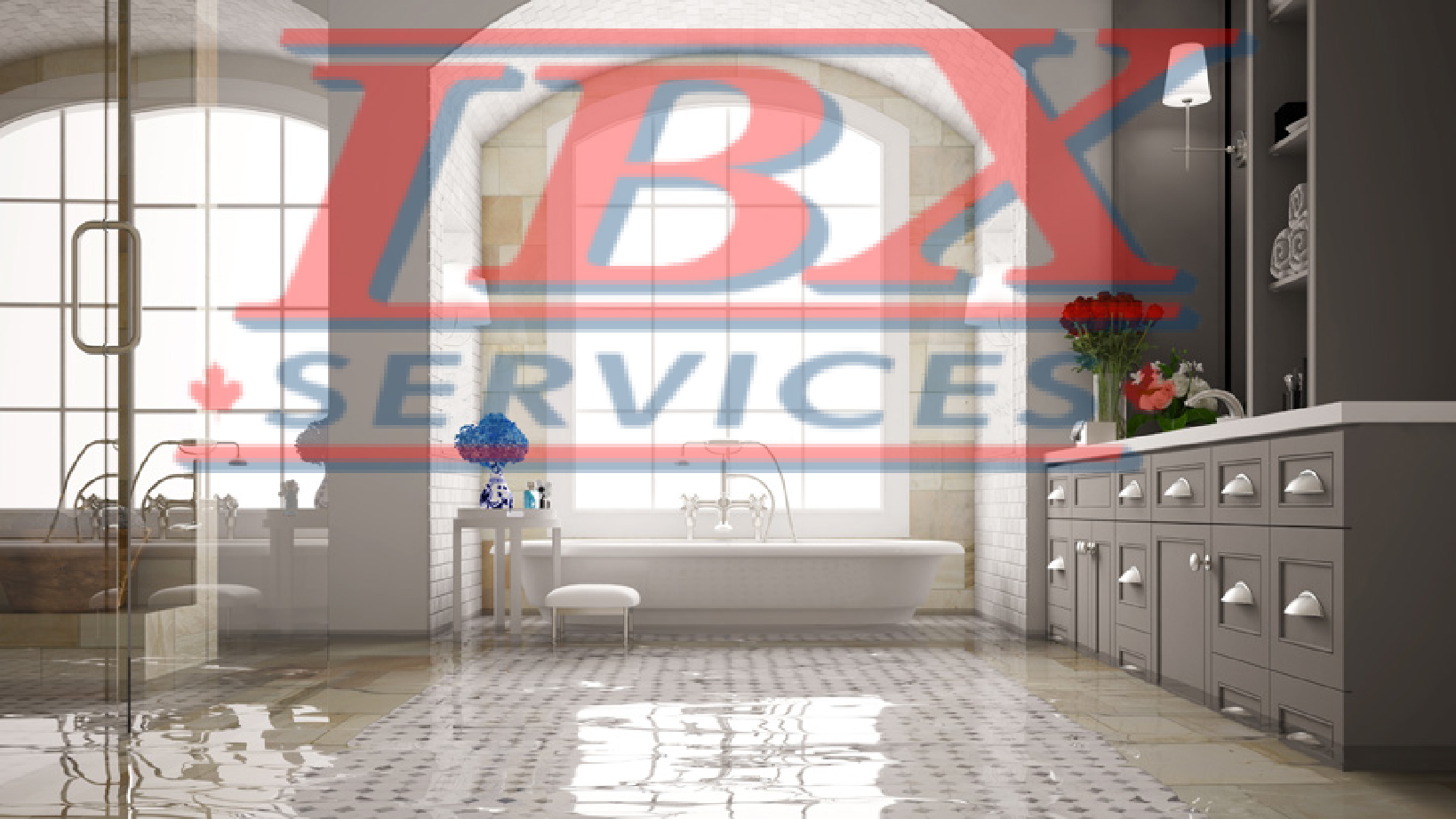 What do water damage companies do