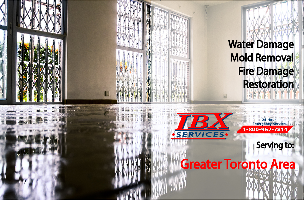 Water damage mold removal fire damage cleanup and restoration