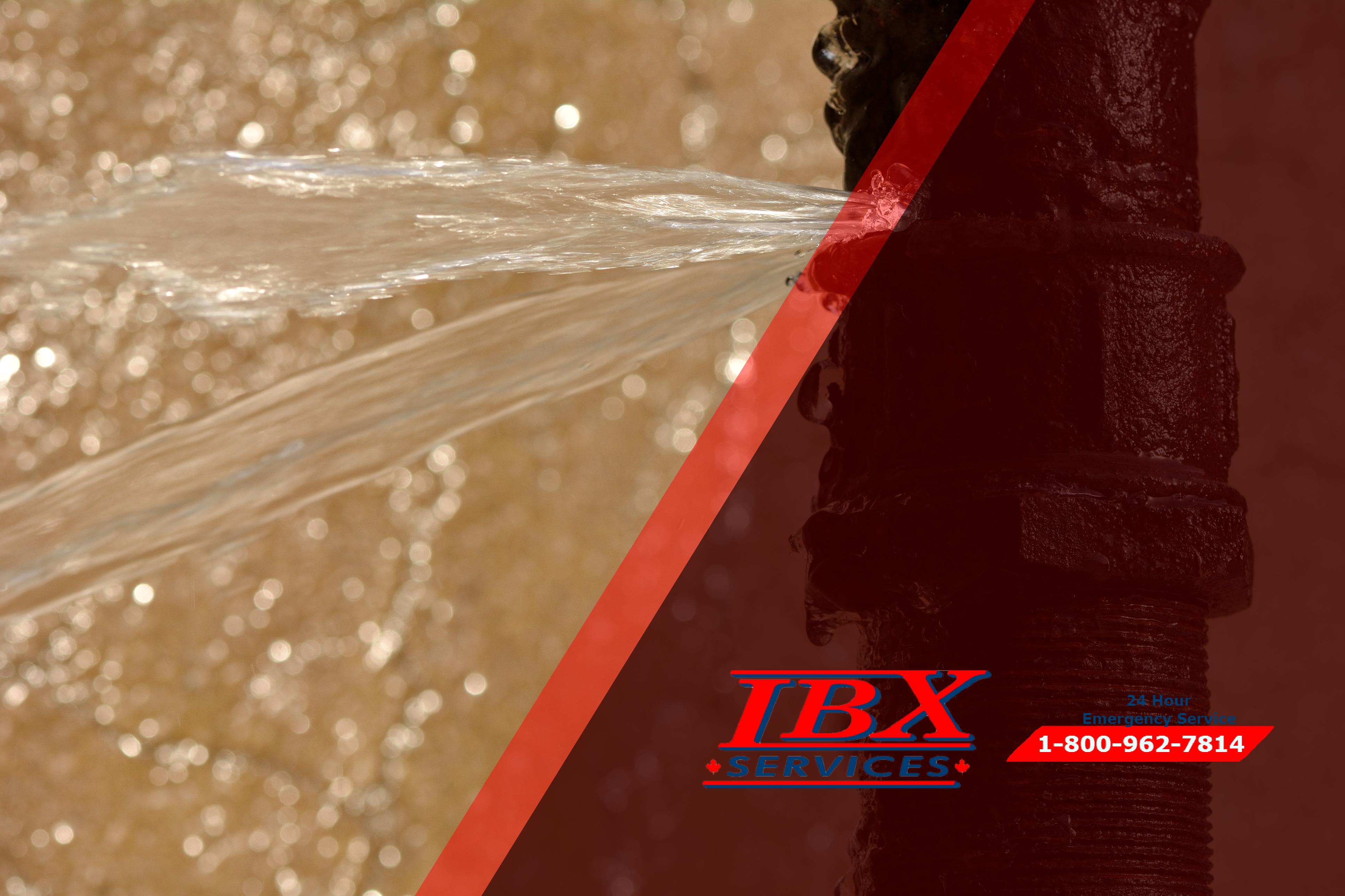 Understanding the Damage Caused by Water Leaks