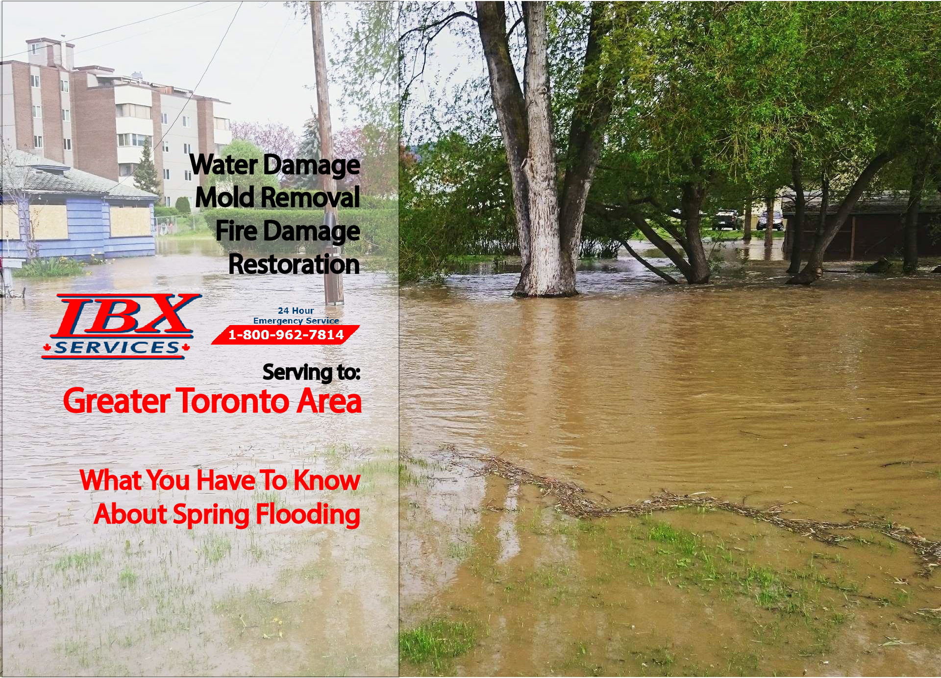 What You Have To Know About Spring Flooding.