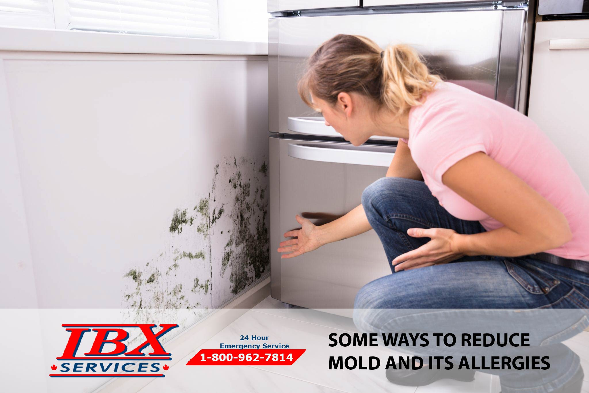 Some Ways To Reduce Mold and Its Allergies