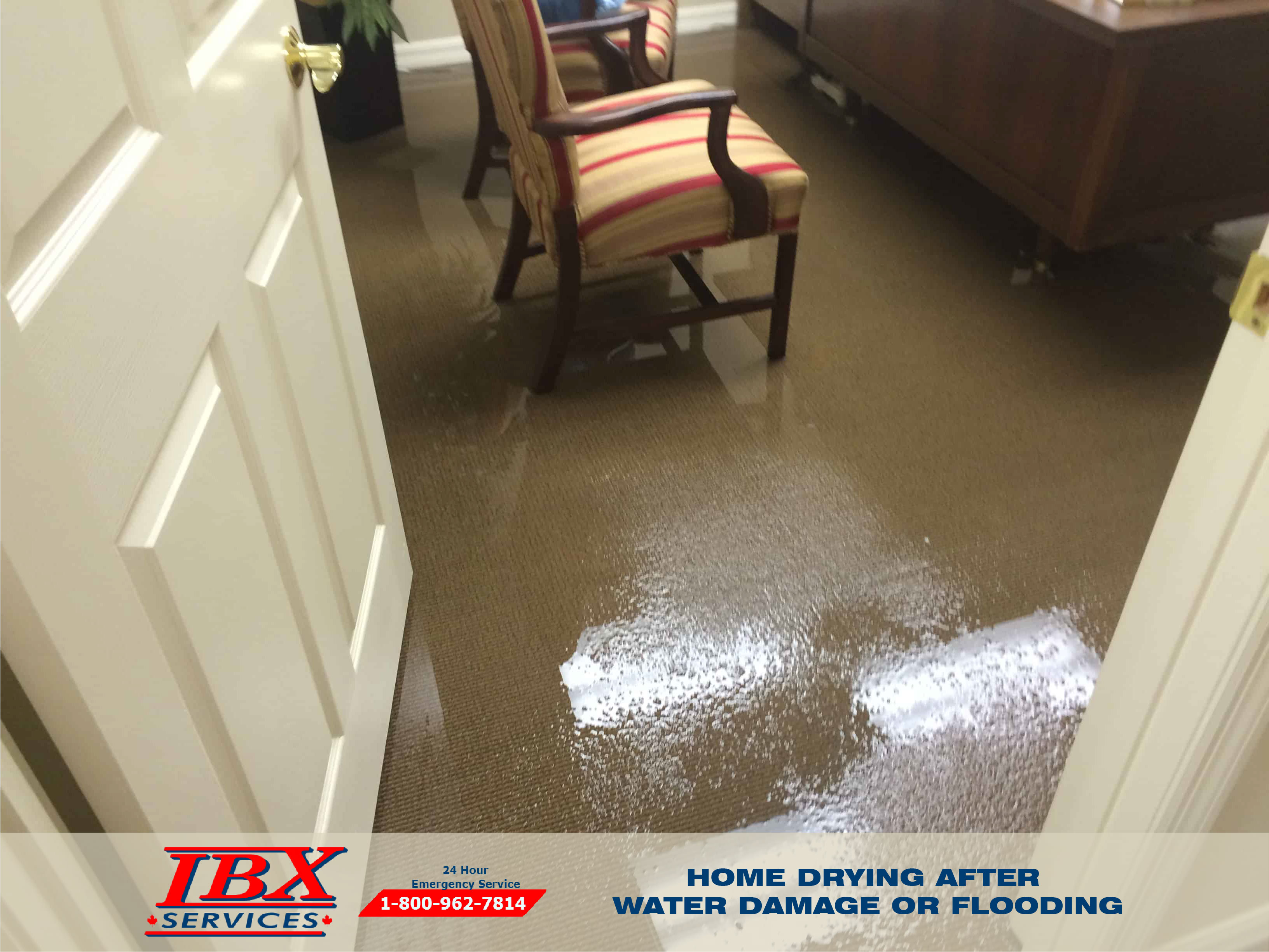 Home Drying After Water Damage Or Flooding