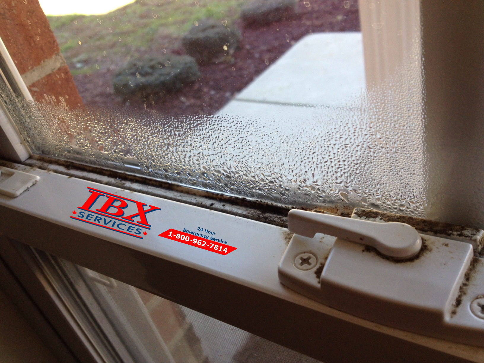 Mold | Control Window Condensation To Prevent Its Growth