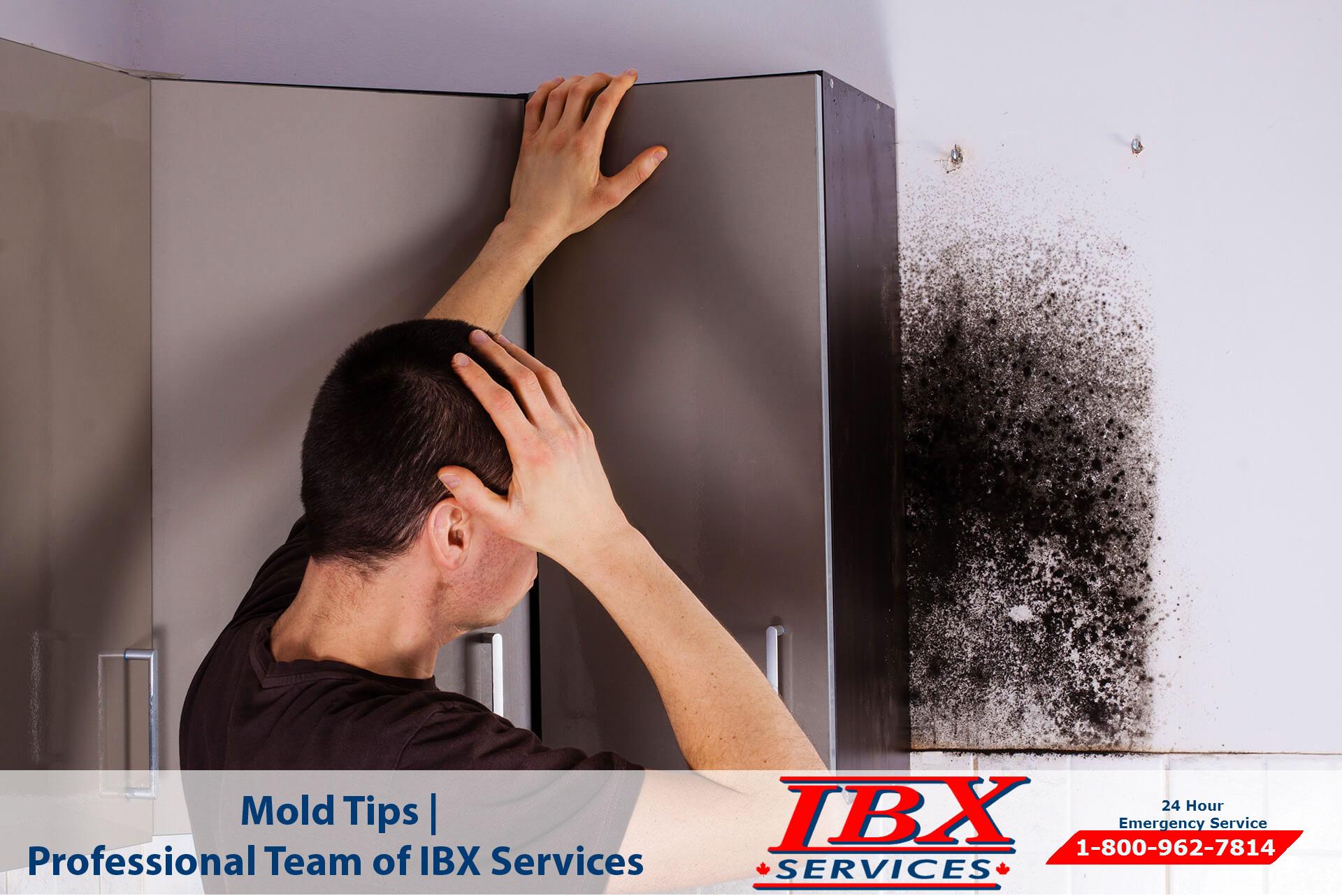 Mold Tips