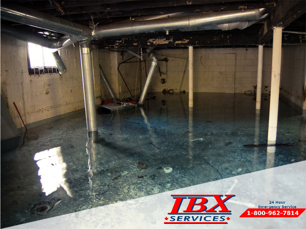 Water Damage Toronto – IBX Services
