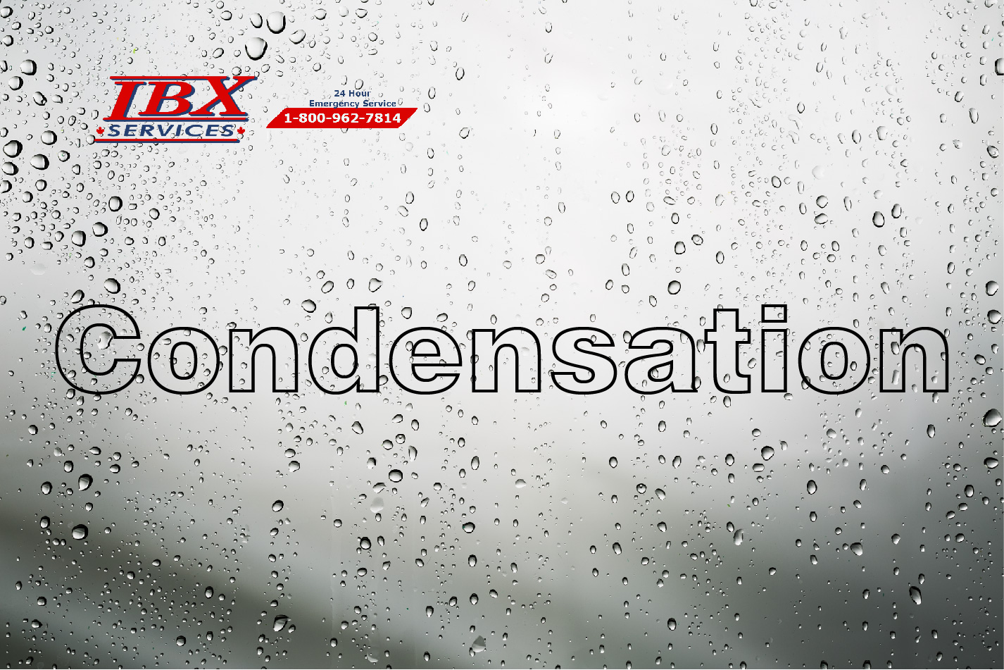 Condensation Damp Problems