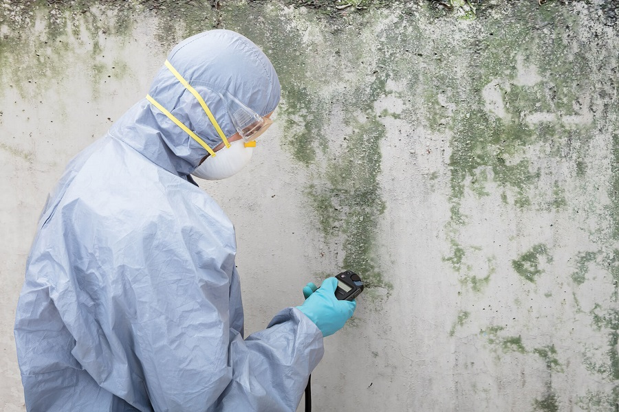 Causes of mold in Toronto houses